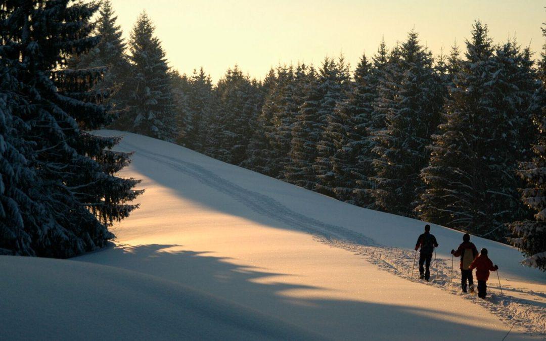Geführte Schneeschuhtouren 2020